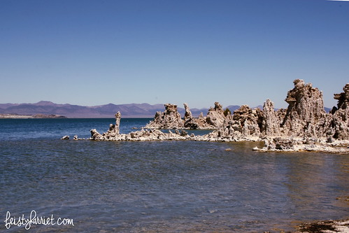 Mono Lake CA (7) Aug 2013_feistyharriet