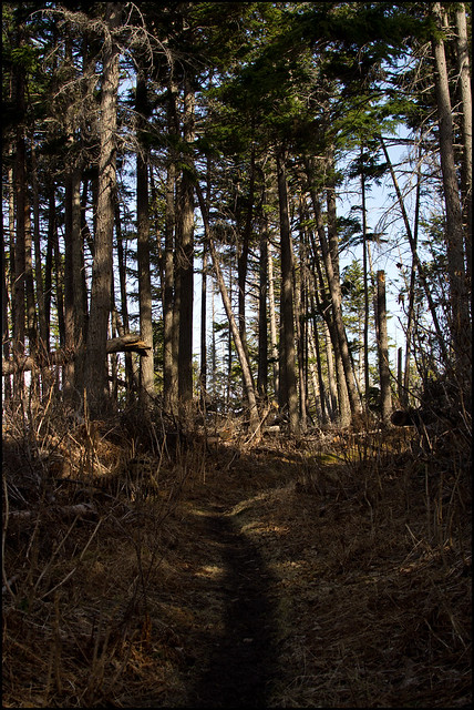 Gull Rock Trail