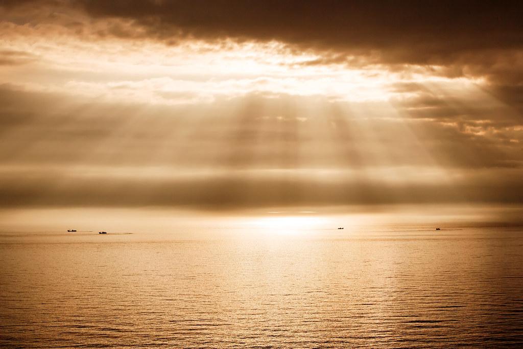 sea of  sunshine