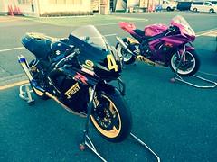 Morning at Tsukuba Circuit.