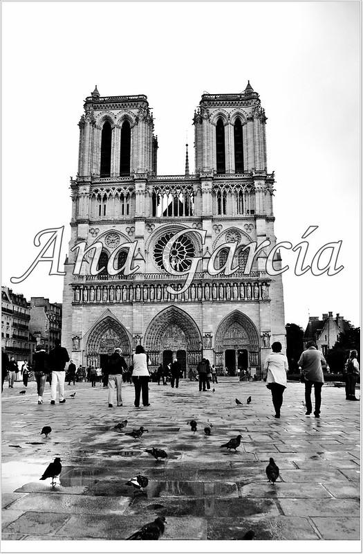 París 44