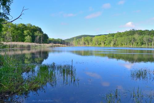 trees lake newyork mountains water reflections pond nikon d3100 smack53 sterlingforestpark