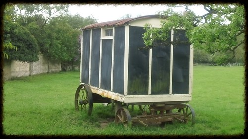 Vintage caravan in field, Netton, Wilts