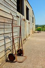 On the Farm, South Devon
