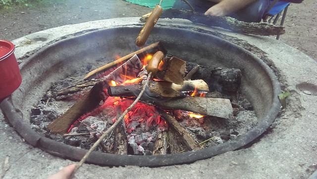 I made a fire. We've got tofurkey dogs roasting.