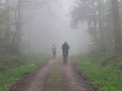Foggy walk - Photo of Fenioux