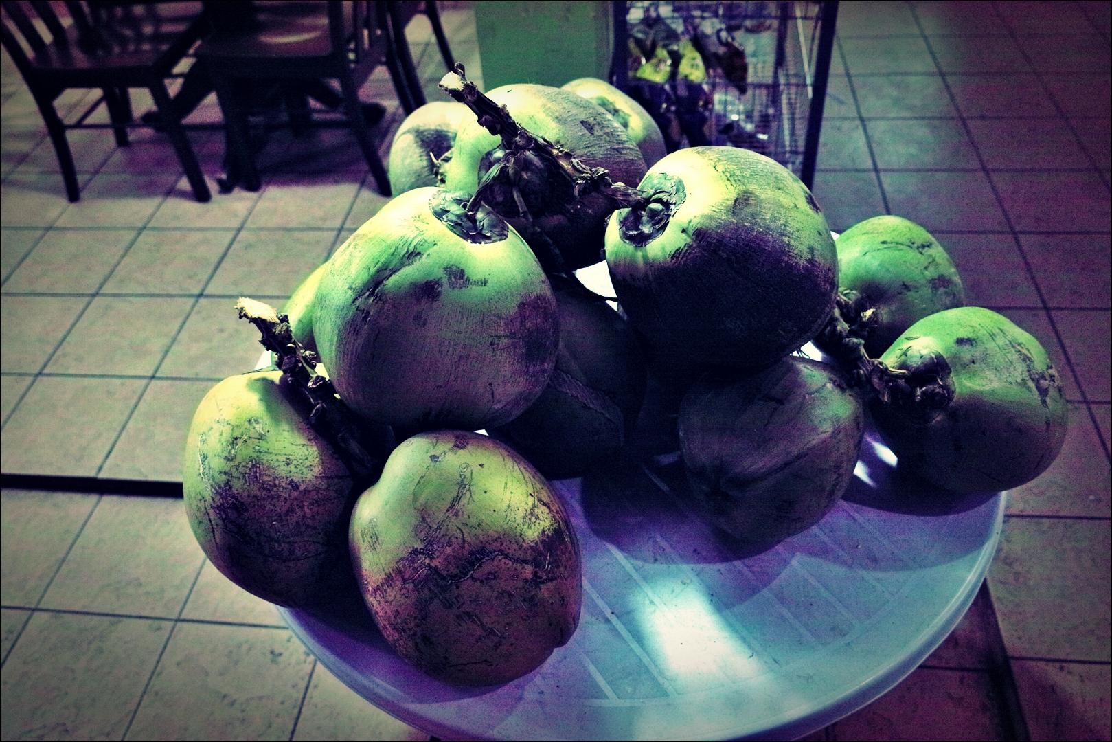 코코넛-'코타키나발루 둘러보기 Sightseeing Kota Kinabalu '