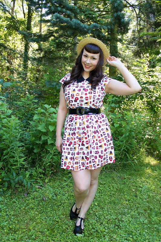 camera print dress