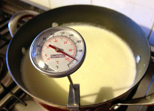 warm yellow whey in a large pot, thermometer showing 95 deg