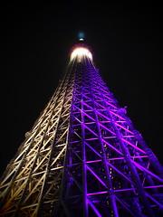 Nightview, Tokyo Skytree. 東京スカイツリー,夜景.