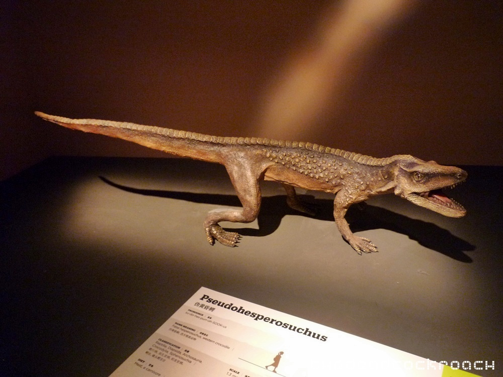 artscience museum, dawn to extinction, dinosaurs, exhibition, marina bay sands, mbs, singapore,pseudohesperosuchus