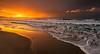 Ocean Morn - Neck Beach