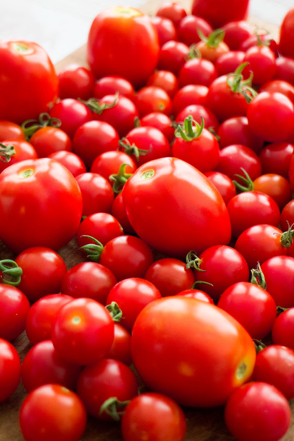 It's raining tomatoes!_13