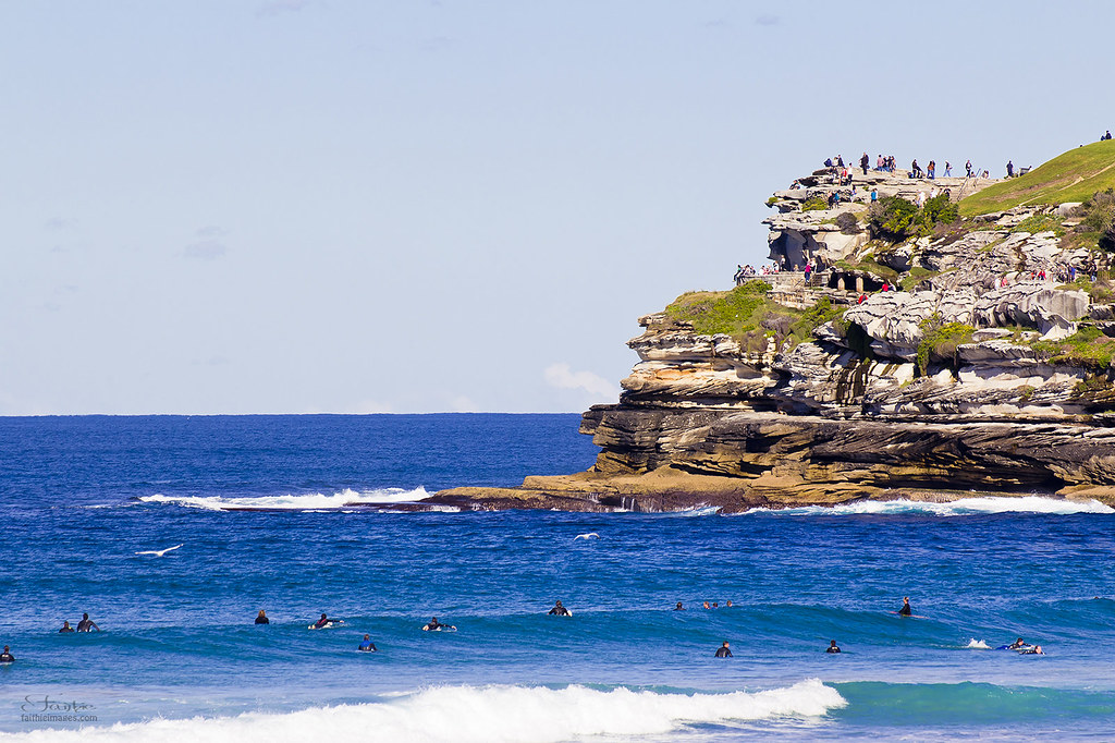 the cliffs between Bondi and Bronte and surfers in the water