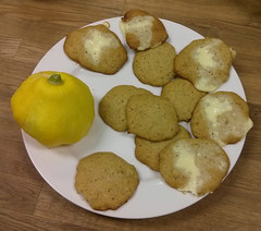 Goopy Cookies