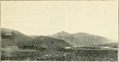 Hill of Ward
