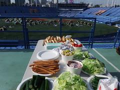 140731-0801_Jingu_stadiumcamp_100
