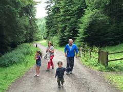 Gruffalo Walk at Whinlatter