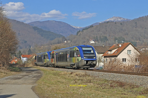 UM X73901