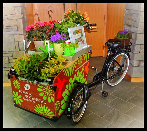 Toronto Botanical Gardens ~ Bike With Flowers