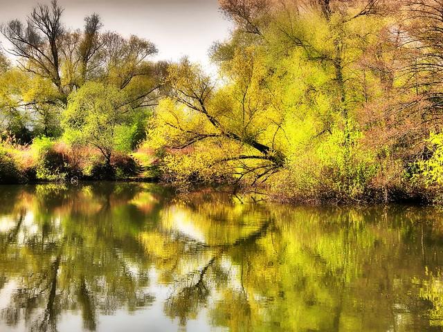 Im Naturschutzgebiet Schorndorf