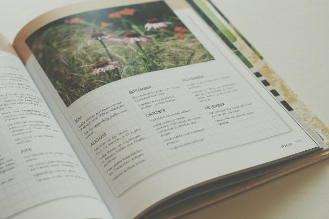 BookLOVE heute Kleine Gärten optimal gestalten 06 small