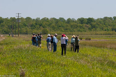 Shorebird ID Workshop participants at the Coldwater River NWR