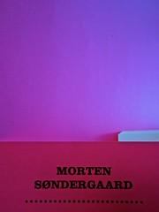 A Vinci, [...], di Morten Søndergaard. Del Vecchio edizioni 2013. Art direction, cover, logo: IFIX. Risvolto della quarta di copertina (part.), 1