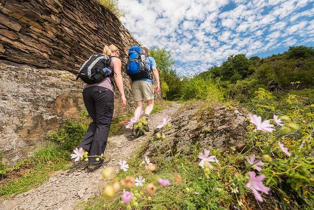 Bezienswaardigheden Cochem nr 10 wandelen op de Moselsteig