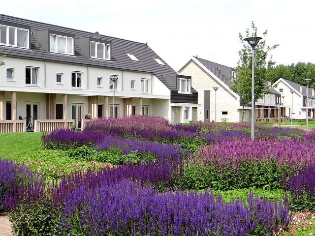 De verborgen tuin park 16hoven nieuwbouw architectuur for De tuinen rotterdam
