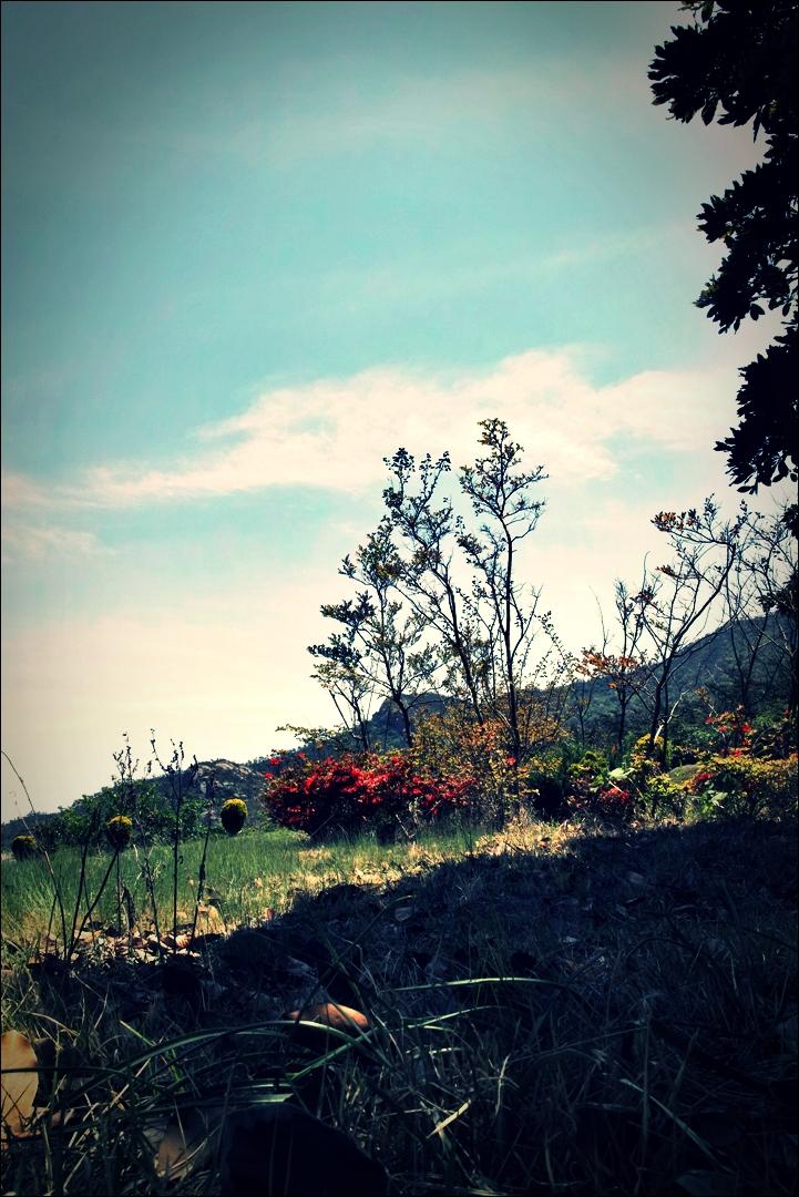 휴식-'비금도 Bigum Island Shinan'