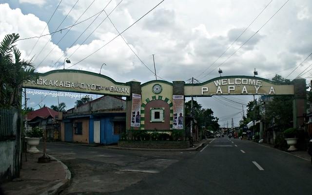 Papaya Arch