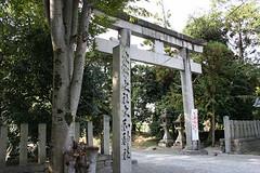 shrine067
