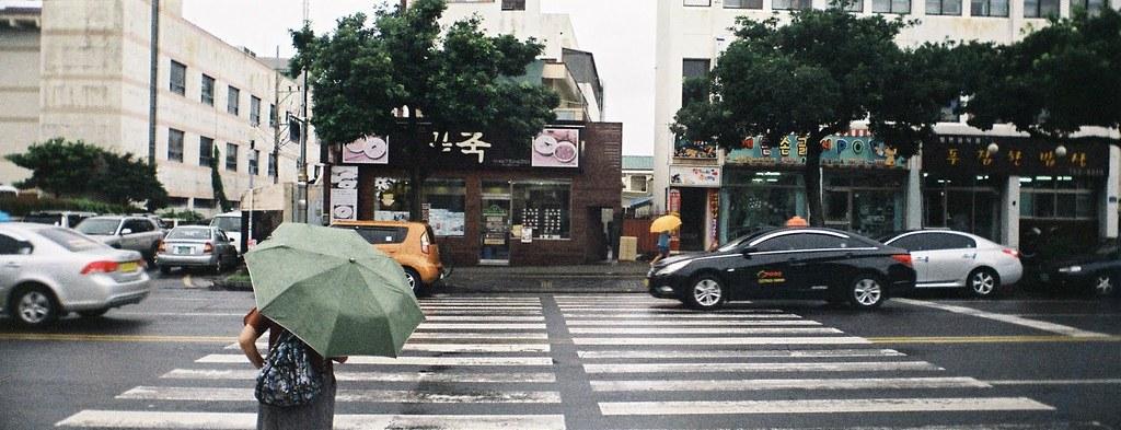 Seogwipo Street Rain