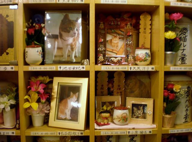 Visit to Jindaiiji Temple - Pet Cemetary Area