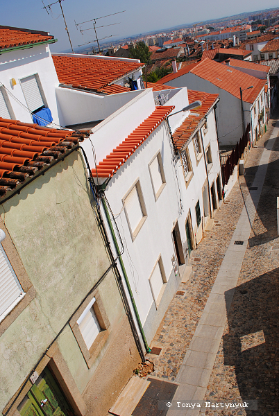 31 - Castelo Branco Portugal - Каштелу Бранку Португалия