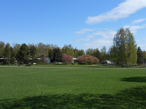 Nurminäkymä, Pohjois-Tapiola Espoo 15.5.2014