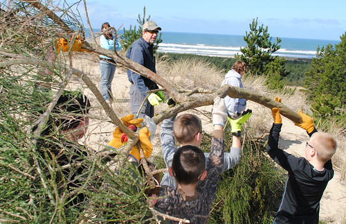 Siuslaw Stream Team Leader Jim Grano looks on as students remove Scotch Broom from the dunes. (U.S. Forest Service)