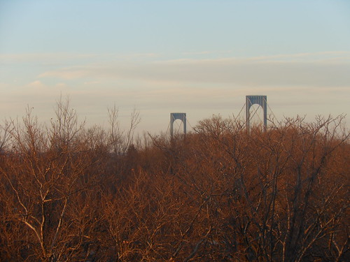 nyc bridge trees ny nikon warm bronx places queens transit distance whitestone