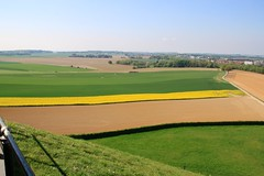 Battlefield of Waterloo