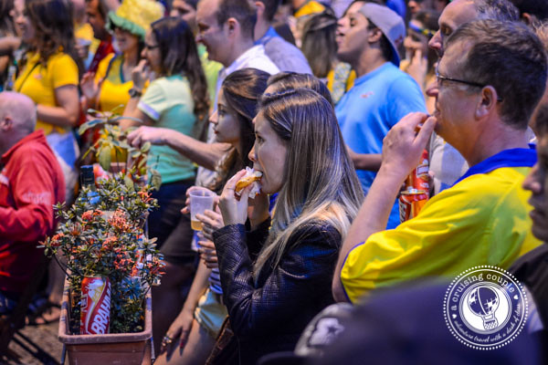 Fans at Brazil World Cup 2014