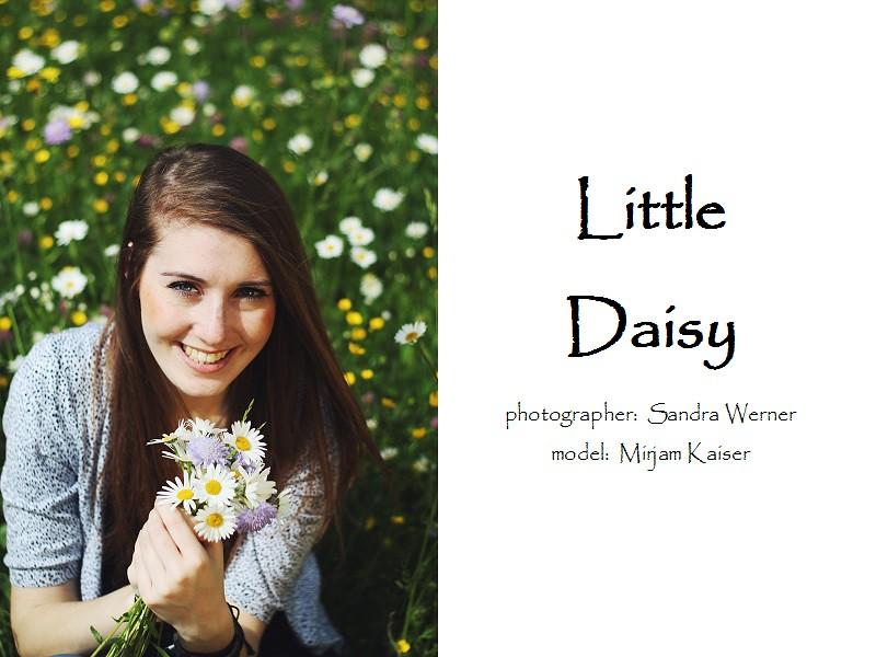 http://sunny-blossom-photography.blogspot.de/2014/06/little-daisy.html