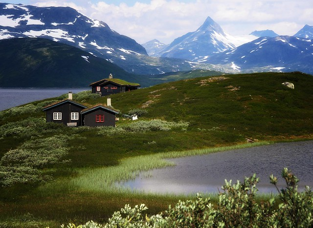 Norway - landscapes: Along lake Tyin in Jotunheimen