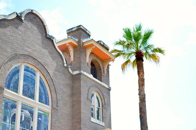 Colorful Building & Palm