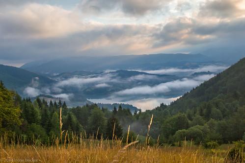 morning summer fog sunrise landscape cloudy serbia balkan srbija taramountain zaovine zaovinskojezero bajinabašta westserbia zlatibordistrict irenebecker nacionalniparktara zaovinelake imagesofserbia irenebeckereu