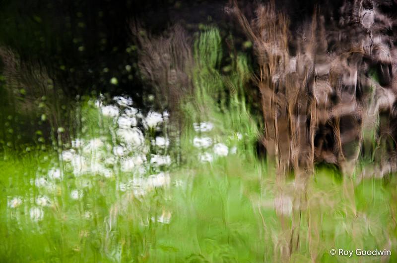 Audubon Endicott - Wenham MA