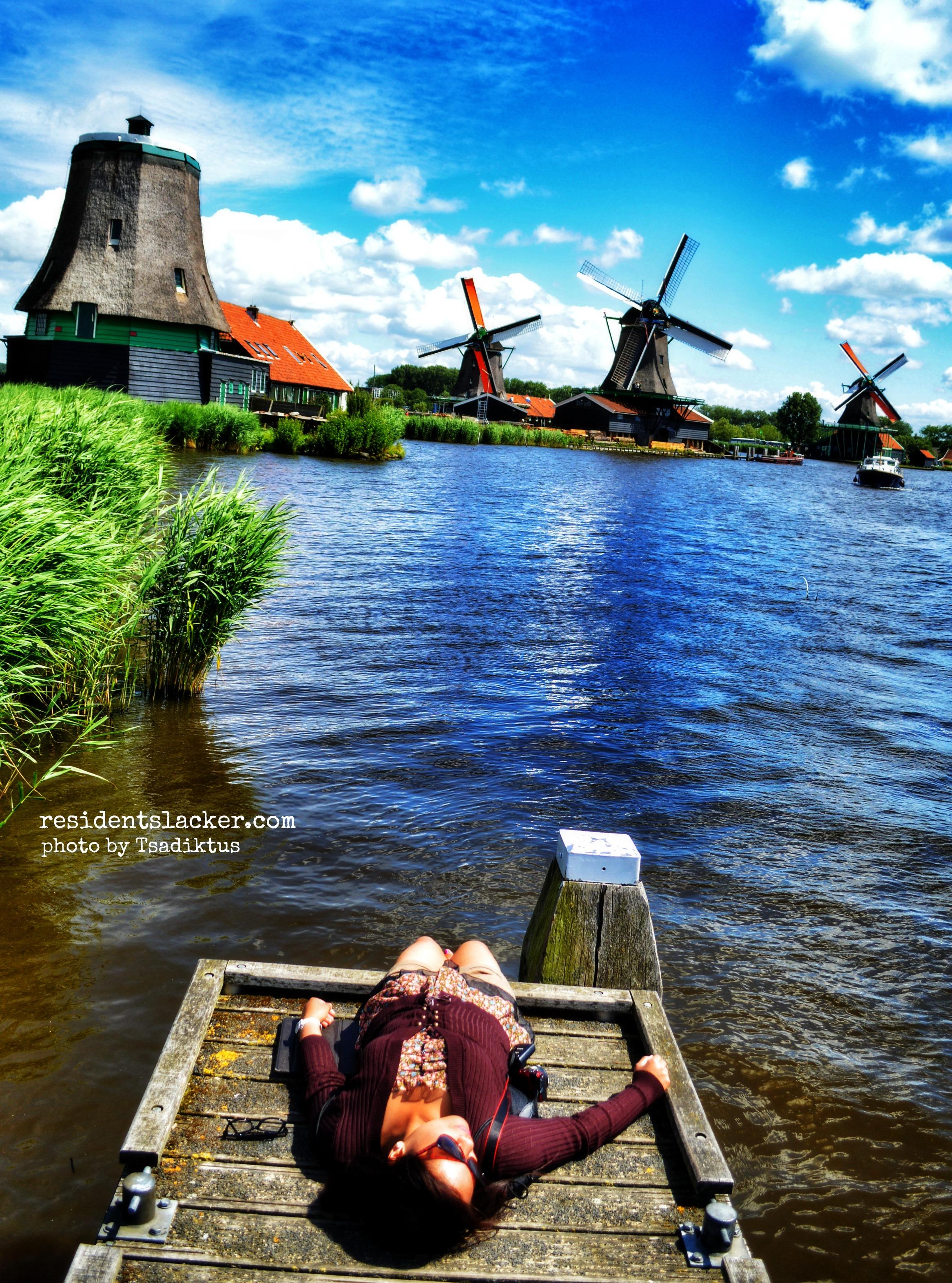 Windmills_07