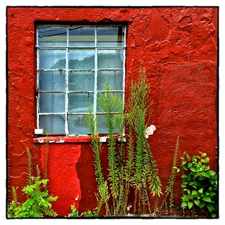 Red Wall # 13