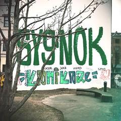 Syg Nok
