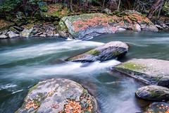 Slippery Rock Creek 3